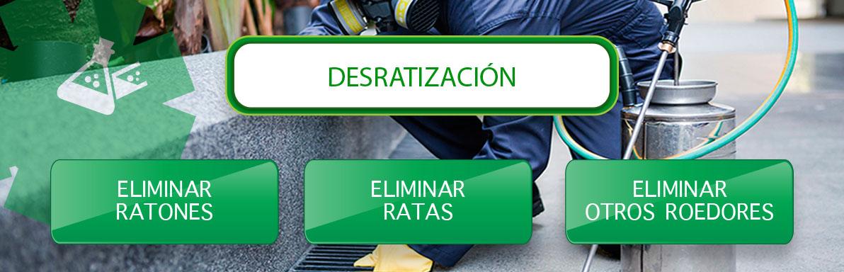 desratizacion y eliminacion de ratones y ratas en Sevilla