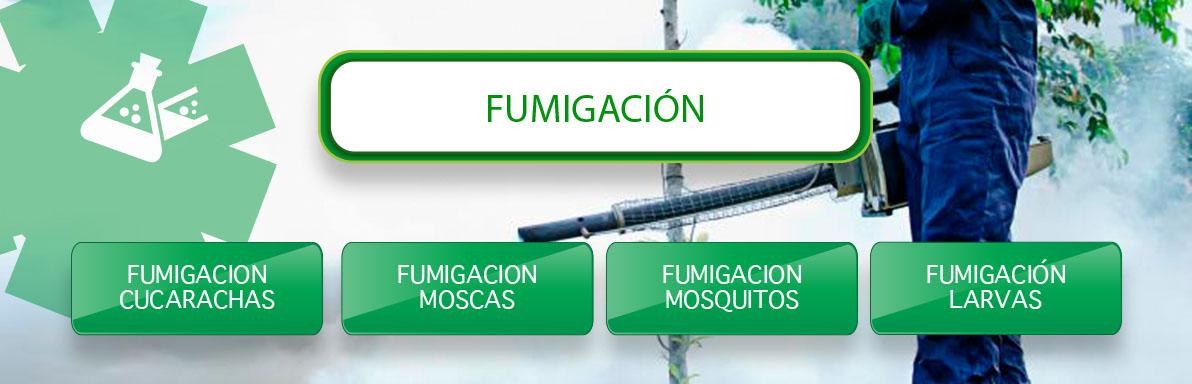 fumigacion de cucarachas fumigacion de moscas y mosquitos en Sevilla
